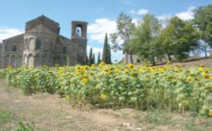 Pratovecchio 2